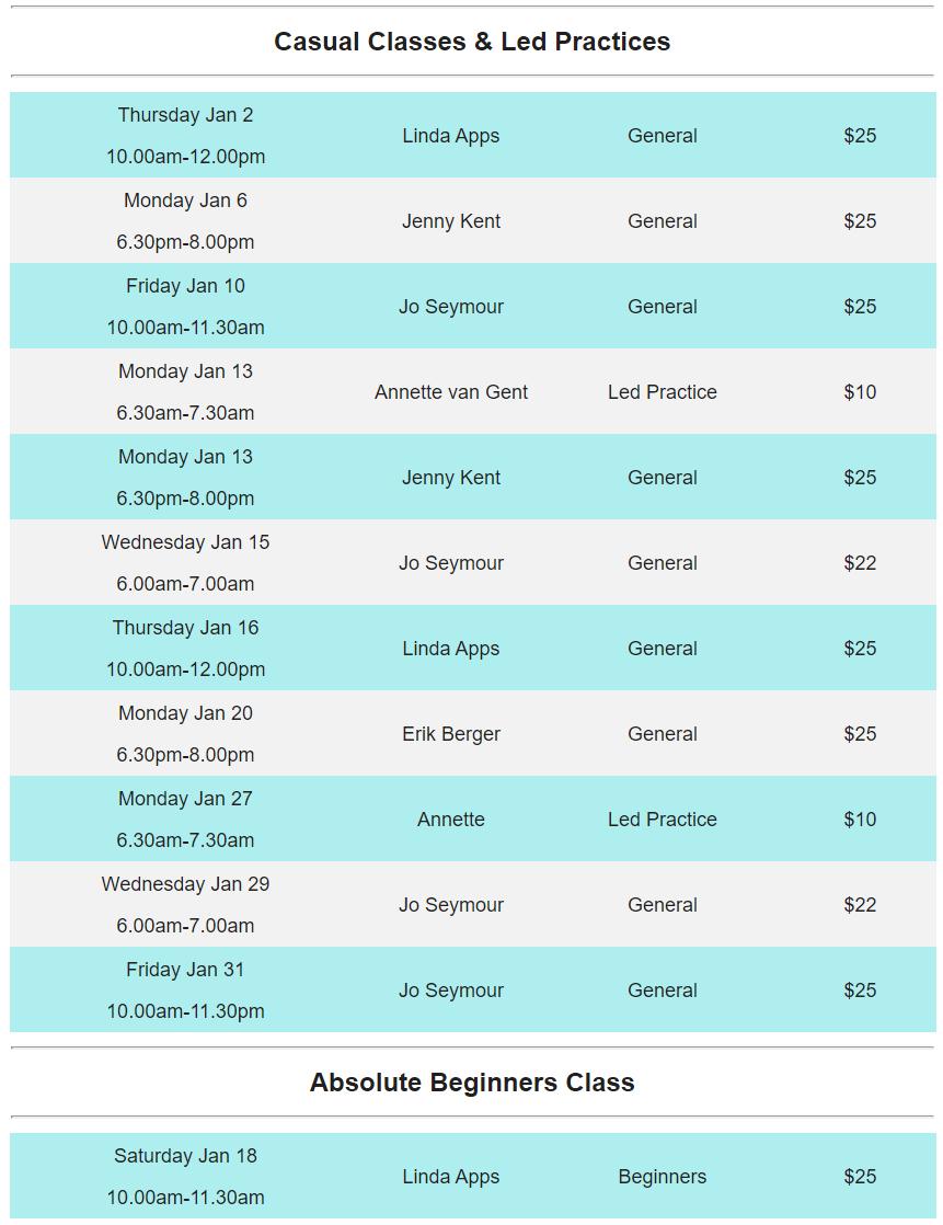 Holiday Yoganook Classes